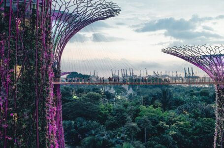 How Well Do You Know Singapore? Know These Interesting Facts About Singapore Before Visiting!